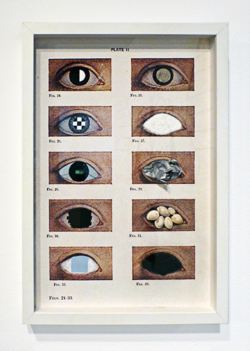 FIGS. 24 – 33, Diseases of the Eye series, 2014, Jaret Vadera, mixed media collage, 13 x 19""